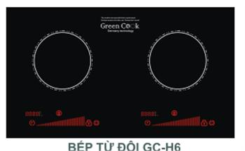 Bếp từ Green Cook GC H6